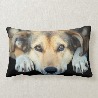 Cute dog on any color background throw pillow