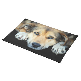 Cute dog on any color background place mats