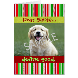 Cute Dog Photo Christmas Greeting Card Stripes