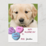 Cute Dog Photo Classroom Valentine Candy Hearts Holiday Postcard