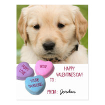 Cute Dog Photo Classroom Valentine Candy Hearts Postcard