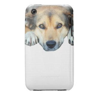Cute dog photograph iPhone 3 Case-Mate case