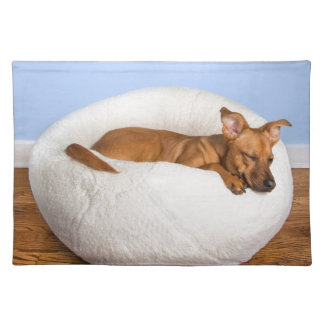 Cute dog place mat