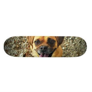 Cute Dog Skateboard Deck