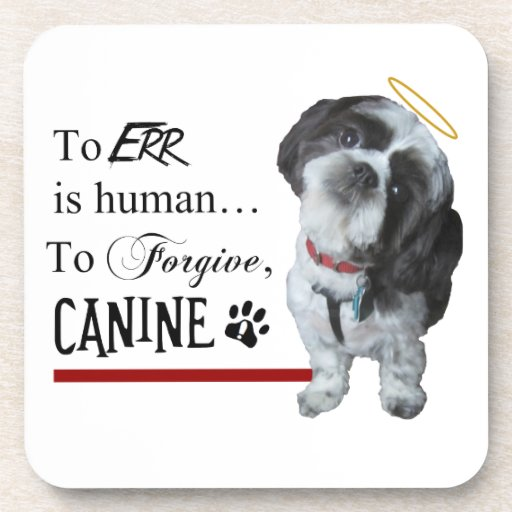 """Cute Dog """"To Err is Human~To Forgive Canine"""" Drink Coaster"""