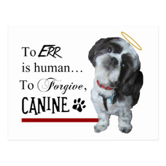 """Cute Dog """"To Err is Human~To Forgive Canine"""" Postcard"""