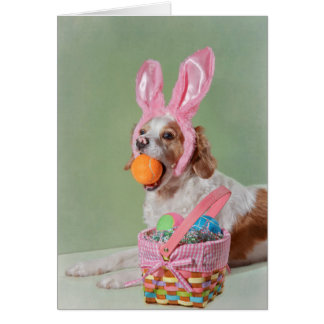 Cute dog with pink nose wearing bunny ears card