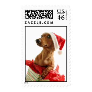 Cute Doggie Holiday Postage Stamps