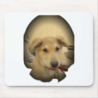 Cute Dogs and Puppies Mans second Best Friend.png Mouse Pad