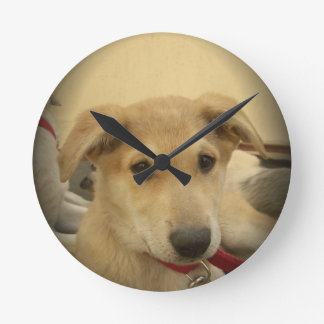 Cute Dogs and Puppies Mans second Best Friend.png Round Clock