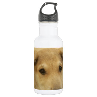 Cute Dogs and Puppies Mans second Best Friend.png Stainless Steel Water Bottle
