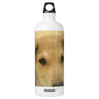 Cute Dogs and Puppies Mans second Best Friend.png Water Bottle