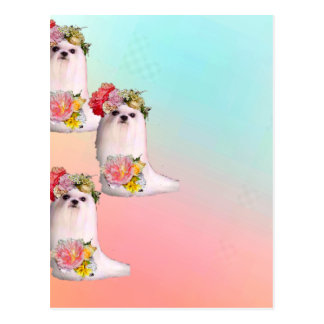 Cute dogs are dressing as flowers girls postcard