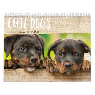 cute dogs calendar 2021