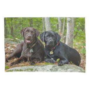 Cool Lab Black Adorable Dog - cute_dogs_chocolate_lab_black_labrador_retriever_pillowcase-rfef5776c59db4a34b39183f22909d57b_zr30l_307  Collection_944179  .jpg?rlvnet\u003d1
