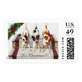 Cute Dog's Christmas Party Postage Stamp