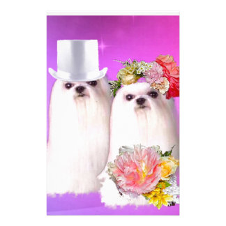 Cute dogs in wedding dress in pink background stationery