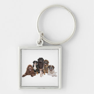 cute dogs keychain