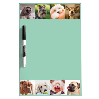 Cute Dogs OR YOUR PHOTOS custom message board