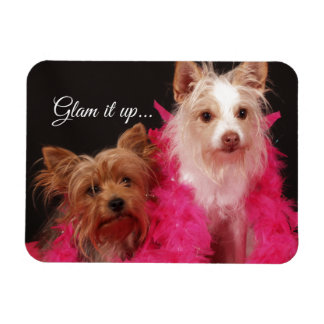 Cute Dogs with Feather Boas Glam it Up Magnet