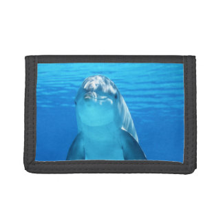Cute Dolphin Marine Animal in Blue Sea Trifold Wallet