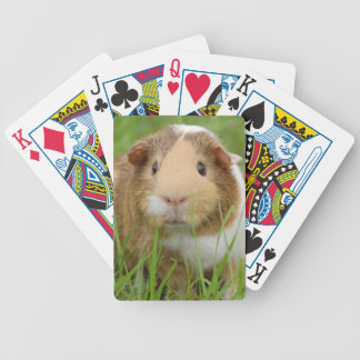 Cute Domestic Guinea Pig Bicycle Playing Cards