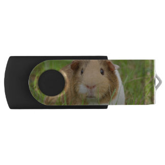 Cute Domestic Guinea Pig Flash Drive