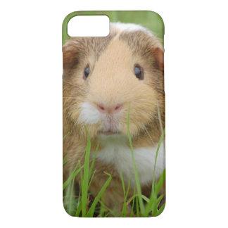 Cute Domestic Guinea Pig iPhone 8/7 Case