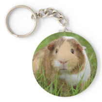 Cute Domestic Guinea Pig Keychain