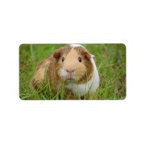 Cute Domestic Guinea Pig Label