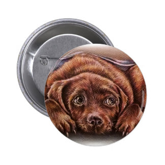 Cute Drawing of Brown Labrador Dog In Blanket 2 Inch Round Button