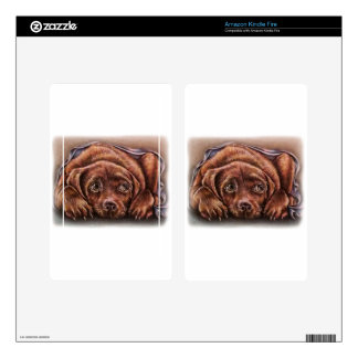 Cute Drawing of Brown Labrador Dog In Blanket Kindle Fire Decals