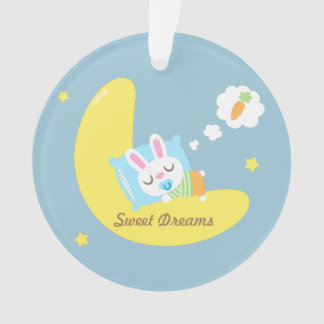 Cute Dreamland Baby Bunny Kids Nursery Room Decor Ornament