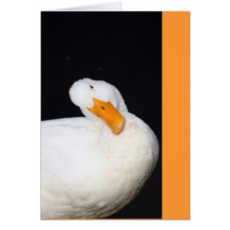 Cute Duck Card