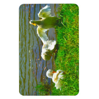 Cute Duck Family Magnet