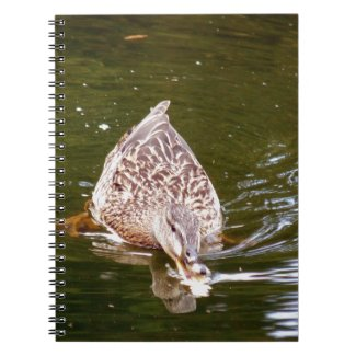 Cute Duck Feeding Notebook