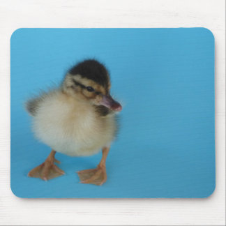 Cute duckling mouse pad