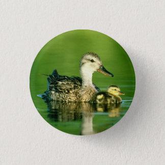 Cute Ducks Button