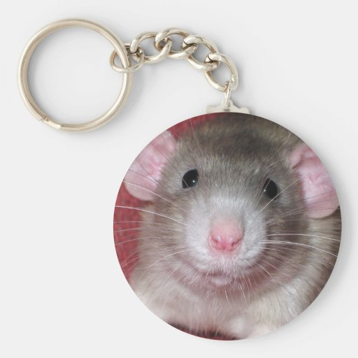 Cute Dumbo Rat Basic Round Button Keychain