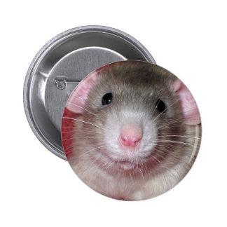 Cute Dumbo Rat Button