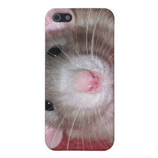 Cute Dumbo Rat Case For iPhone SE/5/5s