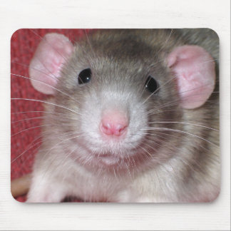 Cute Dumbo Rat Mouse Pad