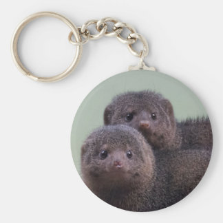 Cute Dwarf Mongoose Pair Basic Round Button Keychain