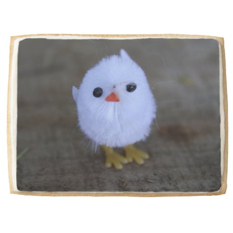 Cute Easter Chicken Cookie Gift