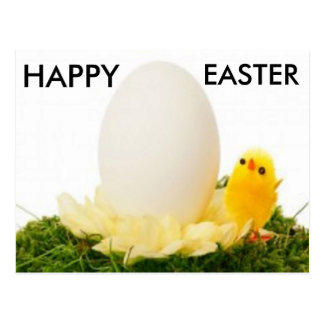 CUTE Easter Egg With Chick Postcard