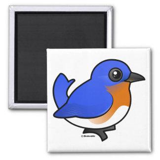Cute Eastern Bluebird Magnet
