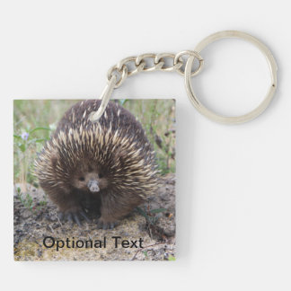 Cute Echidna from Australia Double-Sided Square Acrylic Keychain