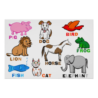 Cute Educational Group of Animal Illustrations Poster