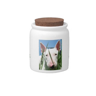 Cute English Bull Terrier Candy Dishes