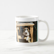Cute English Bull Terrier Puppy Coffee Mug
